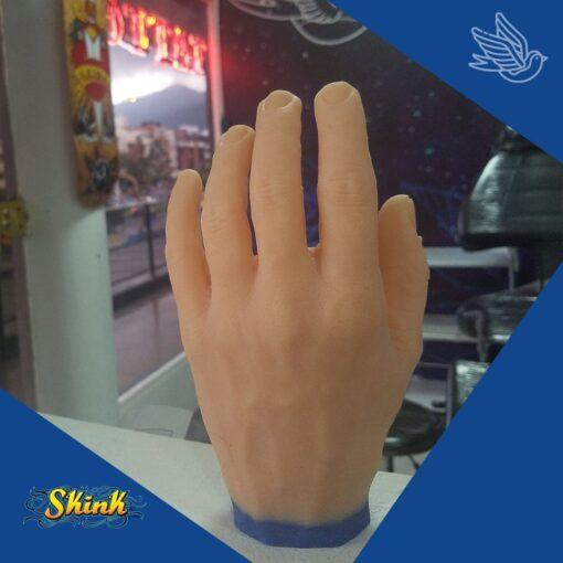Mano Skink